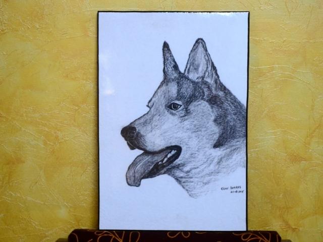 ClodiSuares_Charcoal_drawing_DSC_0046